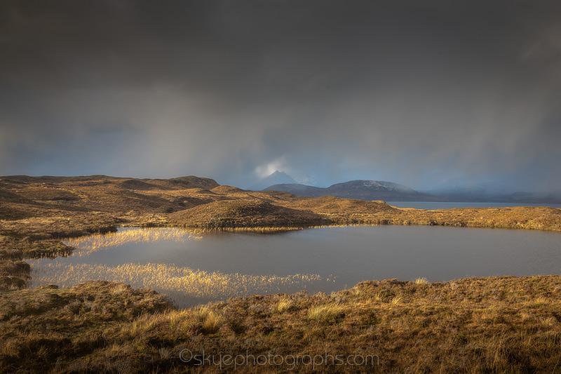 Sun lights up the reeds at Loch Gavsghavaig near Tarskavaig