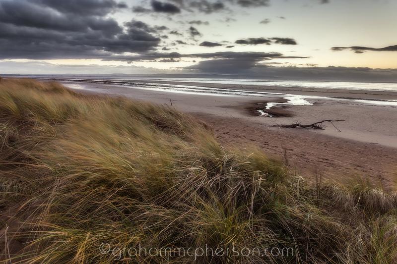Berrow and Brean Sands Marram