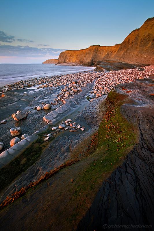 Kilve Rock Seaweed