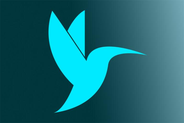 Skyhome Hummingbird Logo