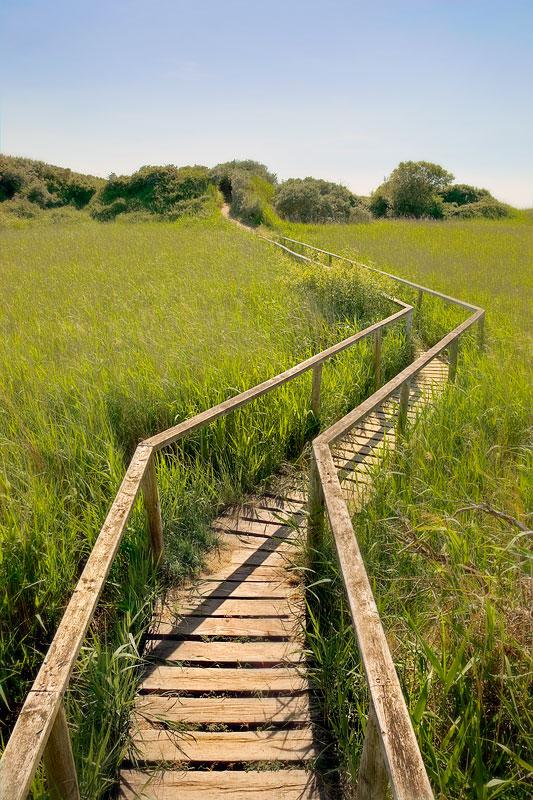Berrow and Brean Summer Marsh Bridge