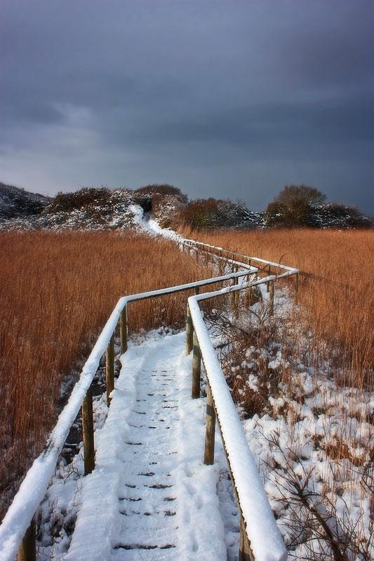 Berrow Marsh Bridge Late winter