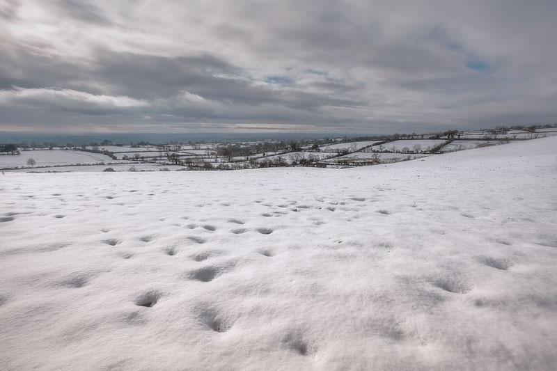 Mendip Snow